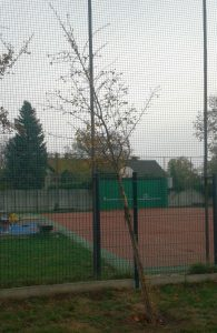 Návrh: Oprava povrchu dětského hřiště