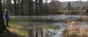 Téma: Záplavové území Chrudimky