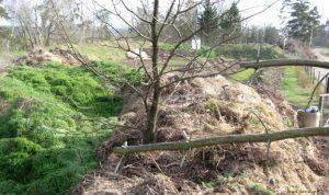 Kompostárna Škrovád - kompost