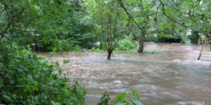 Chrudimka stoupá, ostrov v Olšině je pod vodou, ale v ohrožení nejsme