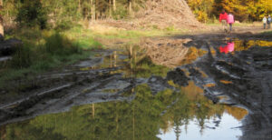 Stavebníci musí nově zajistit vsakování, odpar či akumulaci dešťové vody