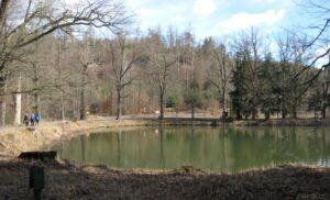 Téma: Kochánovické rybníky