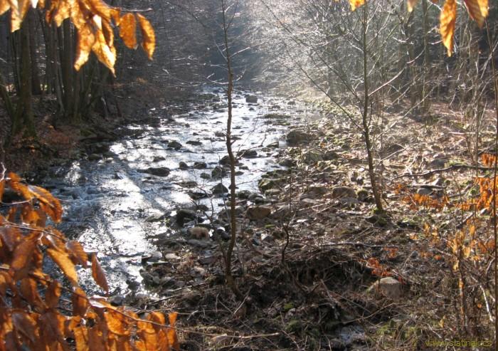řeka s kameny Chrudimka / stones in river