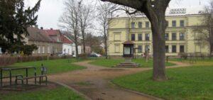 Kácení stromů před školou